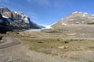 icefieldssmall