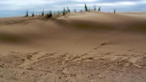 dunes2goodsmall